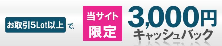 3000円キャッシュバックキャンペーン