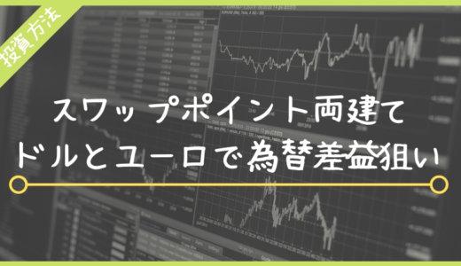 ドル円とユーロ円のFX両建てスワップ手法は100倍安全で超理論的なトレード方法!