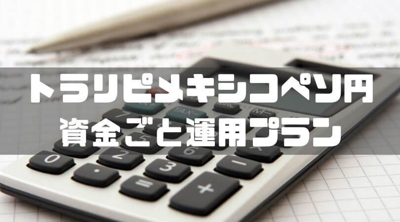 トラリピメキシコペソ円 資金ごと運用プラン